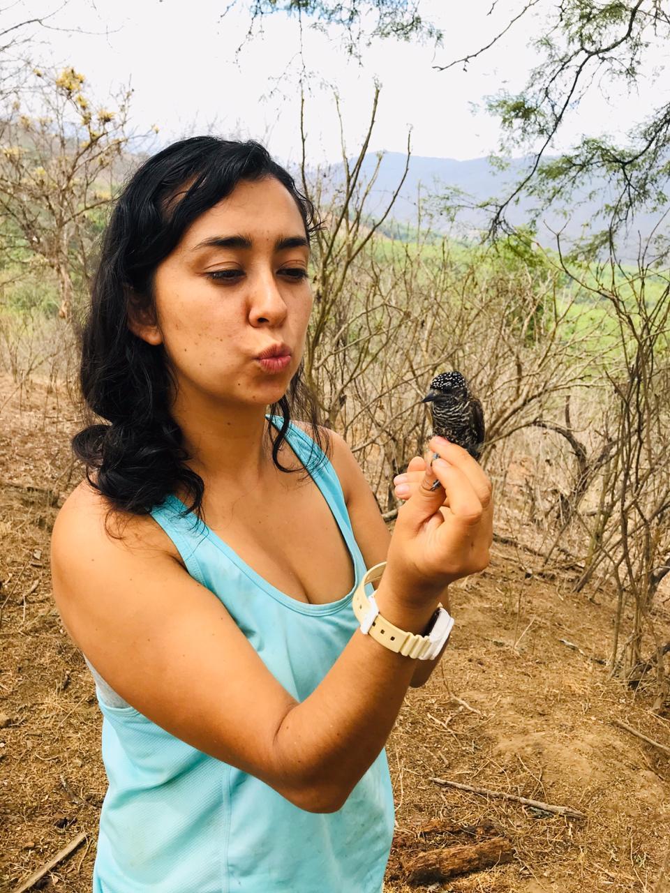 Carolina Ocampo - Ariza